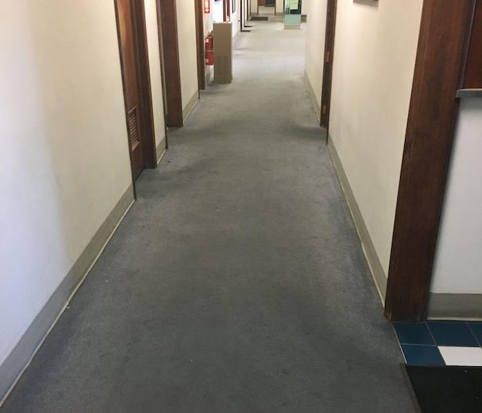 Commercial property hallway with blue carpet