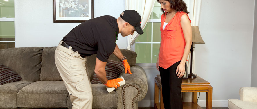 Jamestown, NY carpet upholstery cleaning
