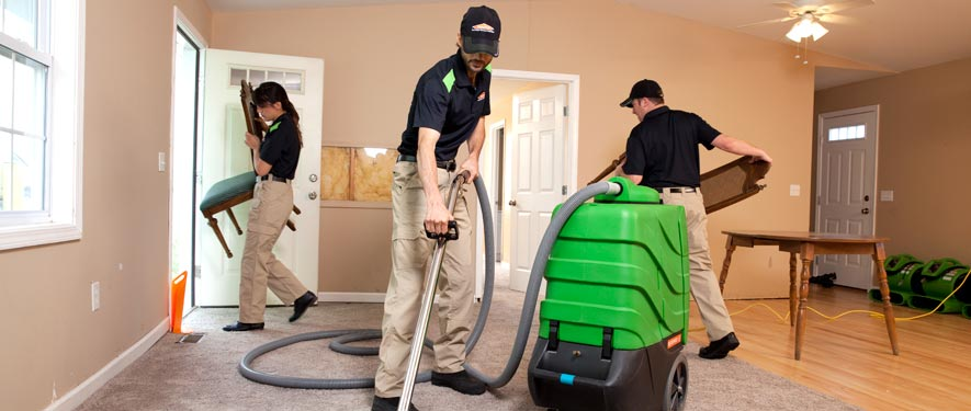 Jamestown, NY cleaning services